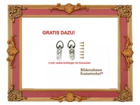 Barock-Bilderrahmen Tudor Orient-Rot,Gold